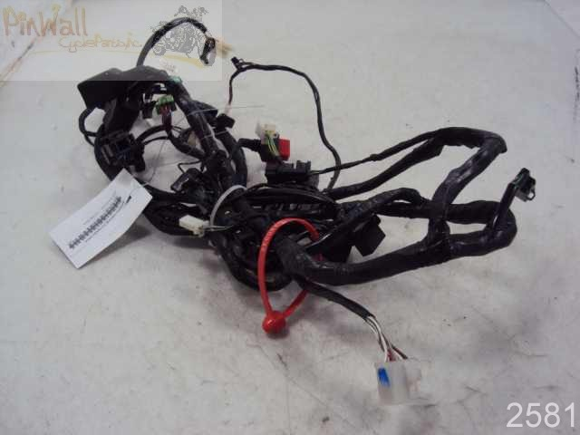 2008 2009 kawasaki ninja ex250 250 main wire wiring. Black Bedroom Furniture Sets. Home Design Ideas